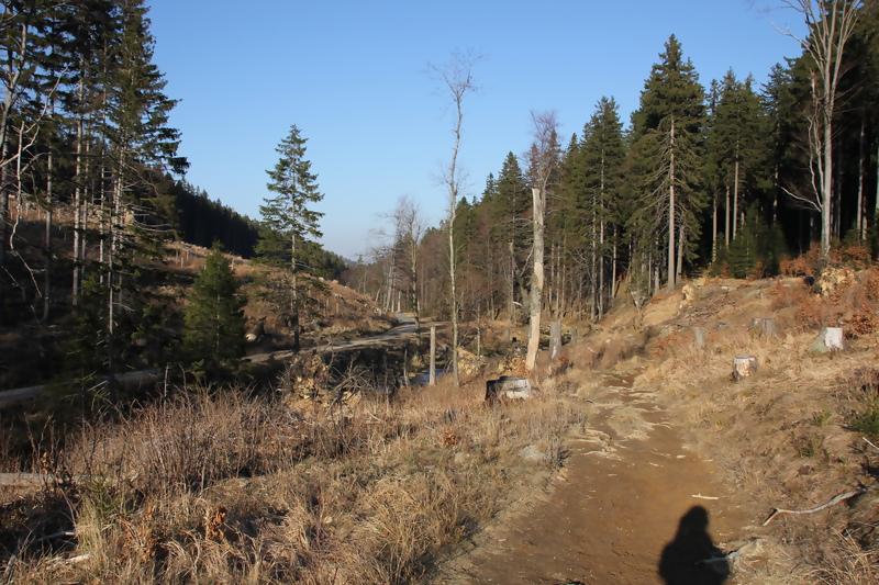Steinerne Renne / Eastern Harz Mountains